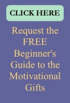 Free Beginner's Guide
